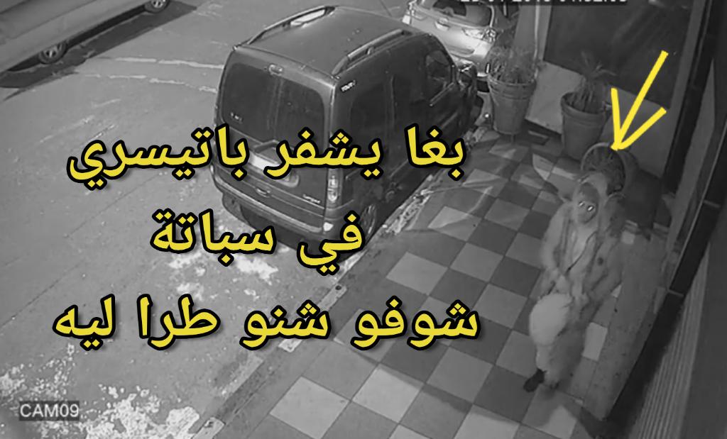فيديو: محاولة سرقة باتيسري في سباتة… شوفو شنو طرا للشفار
