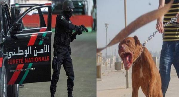 مشرمل يهدد شرطي بكلب و الامن يدخل على الخط