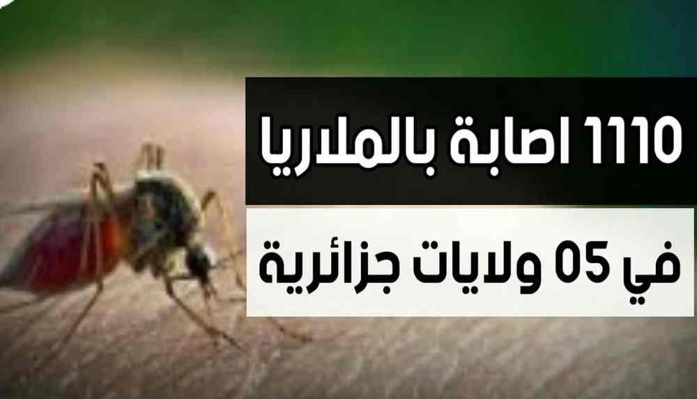 الملاريا تنتشر بالجزائر وتسجل 1110 إصابات